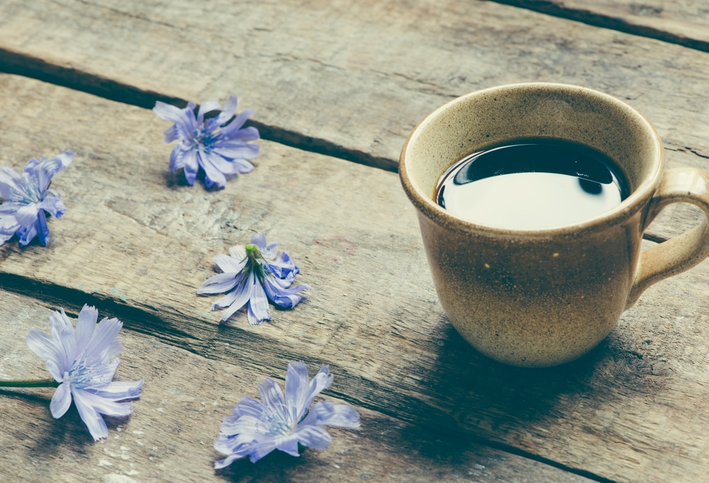 chicory and dandelion coffee