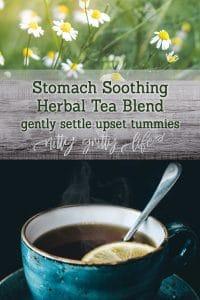Stomach Soothing Herbal Tea Blend