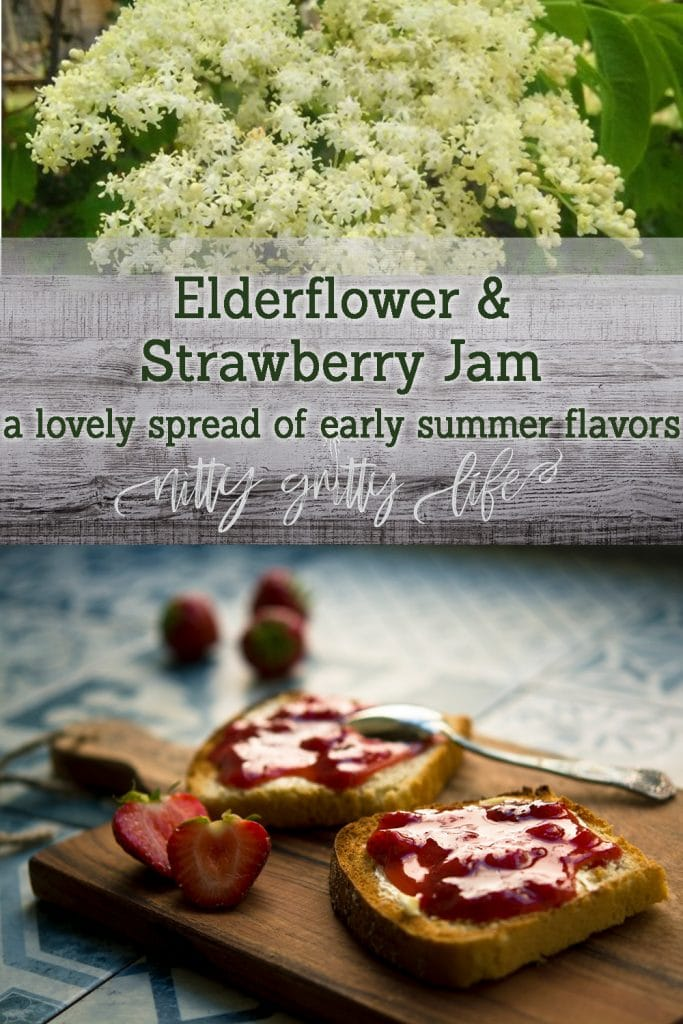 Elderflower Strawberry Jam