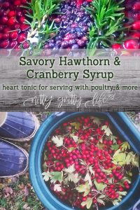 Cranberry and Hawthorn Syrup