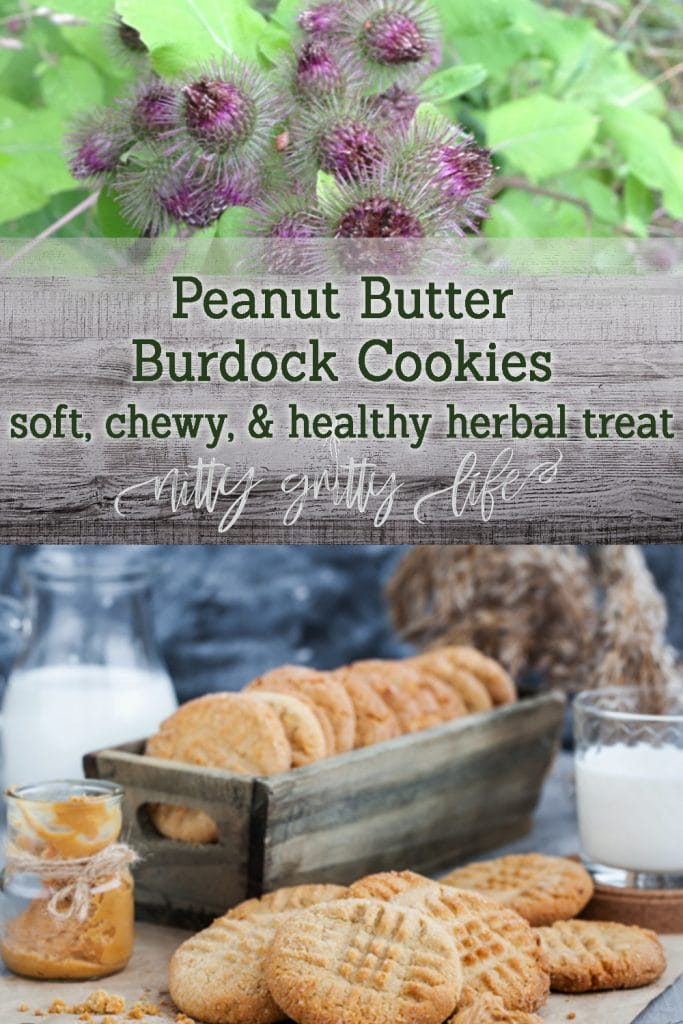 Peanut Butter Burdock Cookies