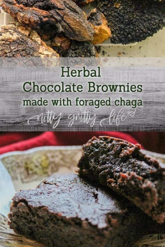 Chocolate Chaga Brownies