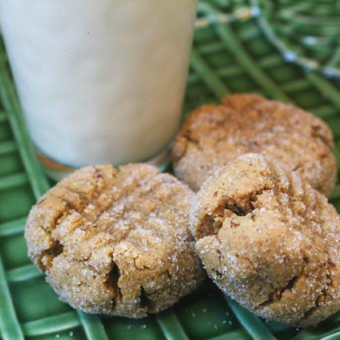 peanut butter burdock cookies