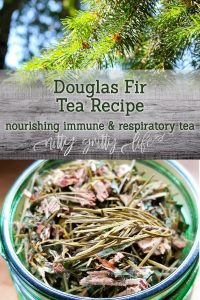 Douglas Fir Tea