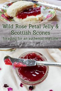 Wild Rose Petal Jam with Scottish Scones