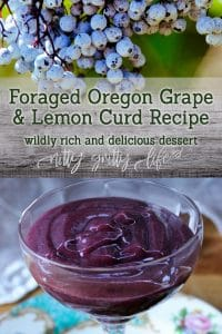 Foraged Oregon Grape and Lemon Curd