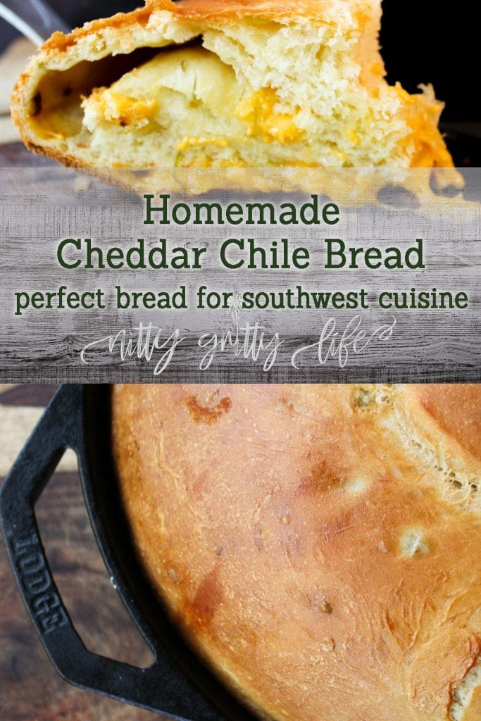 Delicious Cheddar Chile Bread Nitty Gritty Life