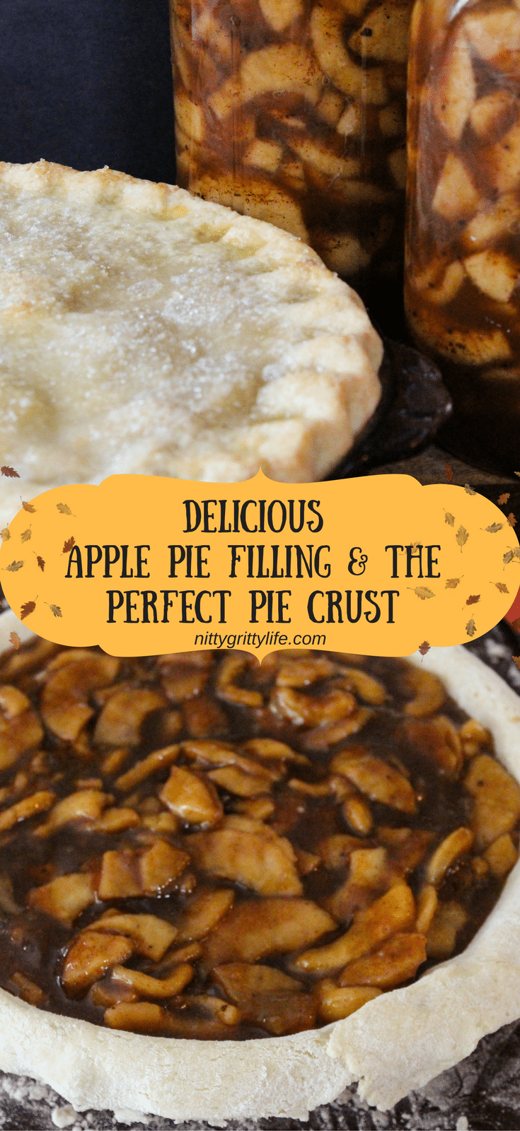 Preserve the bounty of autumn apples by canning this delicious apple pie filling recipe. Also make the perfect pastry crust for a mouthwatering pie!