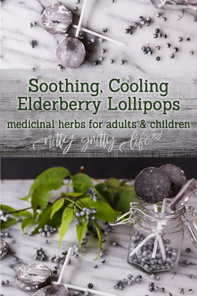 Soothing Cooling Elderberry Lollipops for Kids & Adults