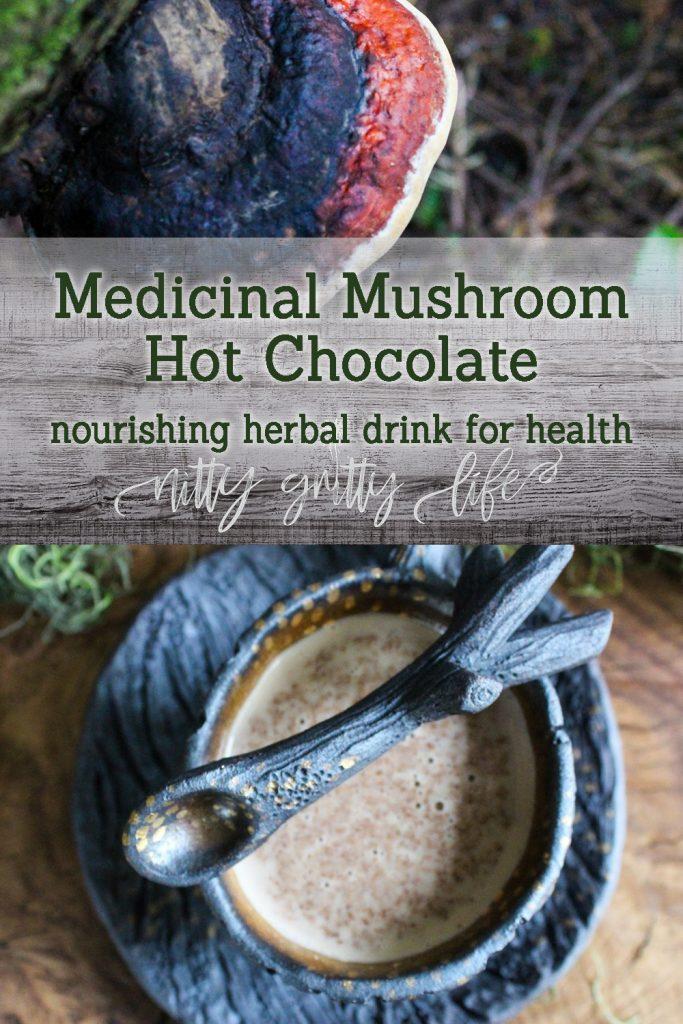 Medicinal Mushroom Hot Cocoa