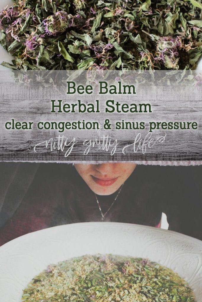 Bee Balm Herbal Steam