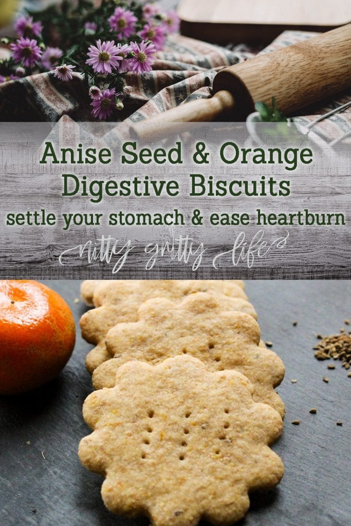 Anise Seed and Orange Biscuits