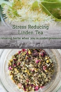 Linden Tea Recipe
