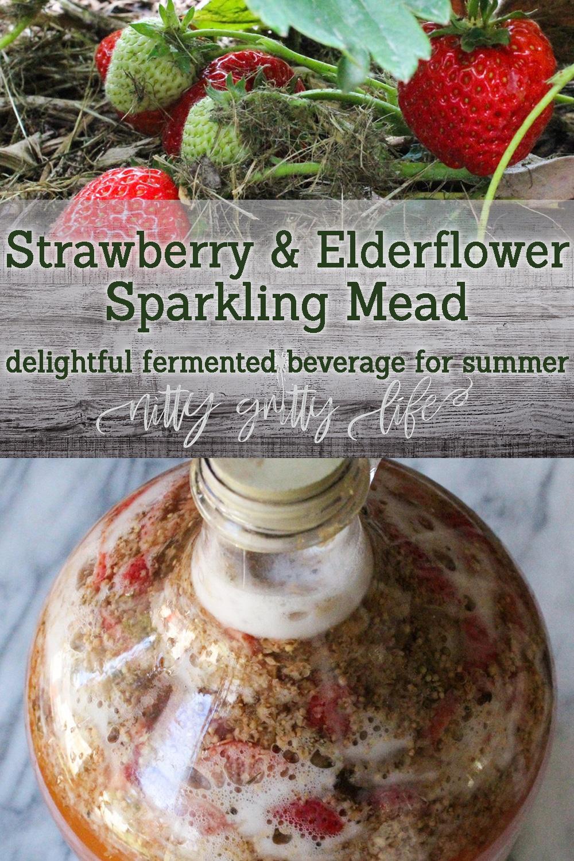 Strawberry Elderflower Mead