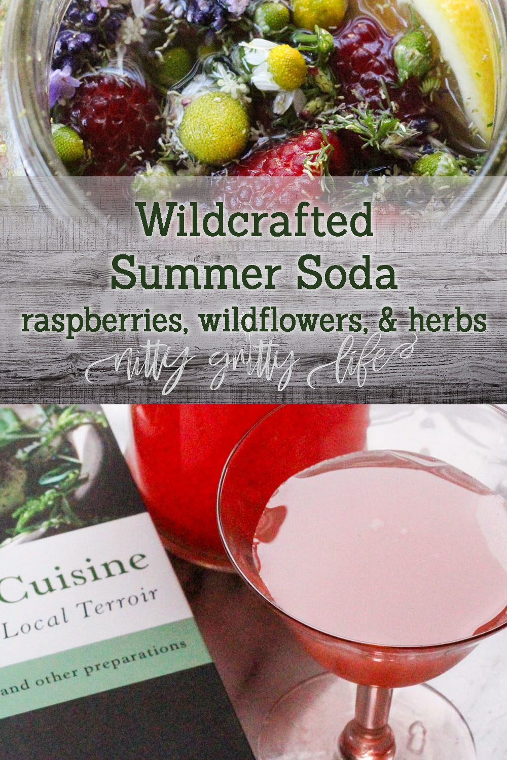 Wildcrafted Soda