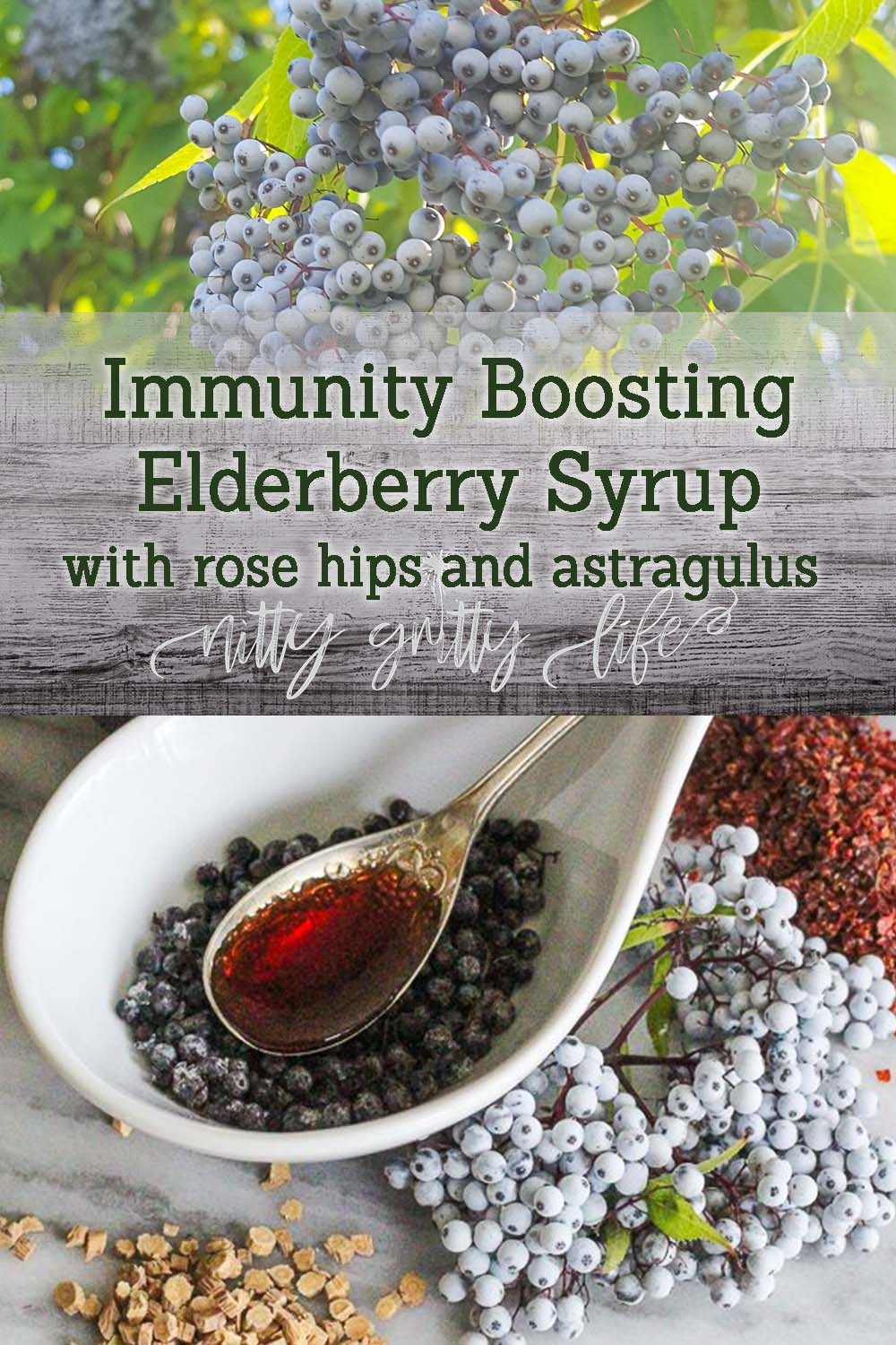Elderberry Syrup with Rose Hips and Astragulus