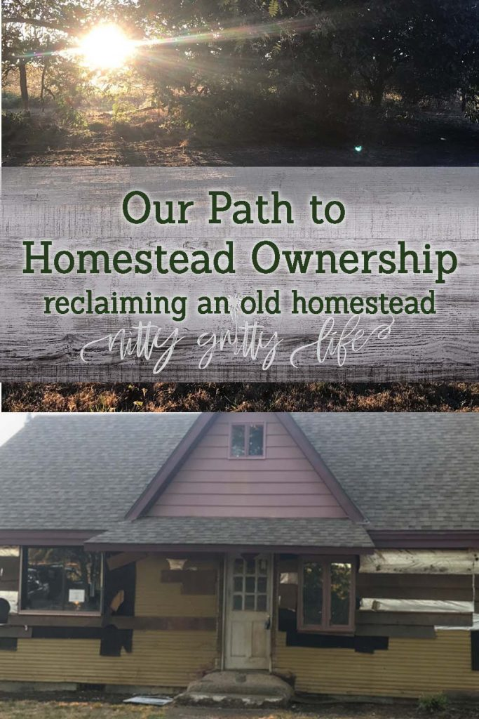 Reclaiming an Old Homestead