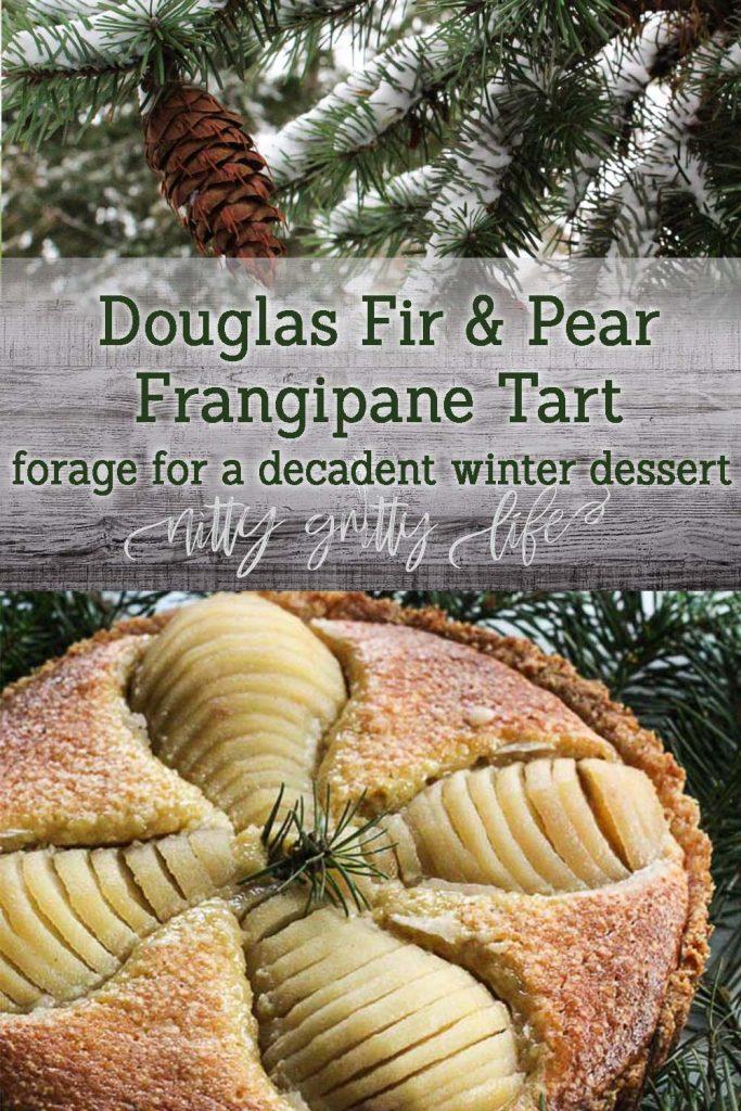 Douglas Fir & Pear Frangipane Tart