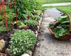 micro-farm edibles in the landscape