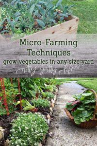 Micro Farming Techniques