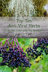 Top 10 Antiviral Herbs for the Cold & Flu Season and Natural