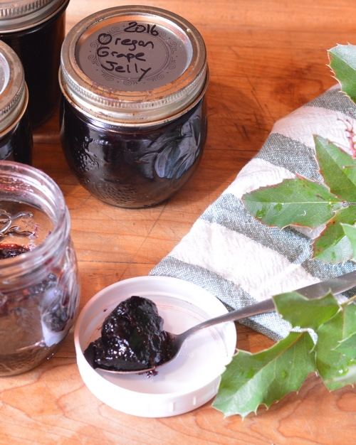 oregon grape jelly