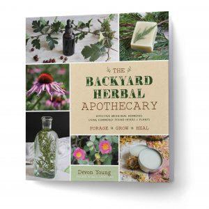 Backyard Herbal Apothecary 3d rendering