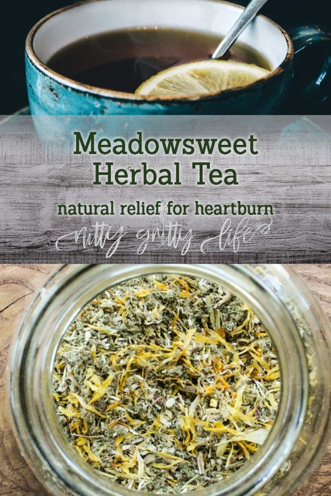 Meadowsweet Heartburn Relief Tea