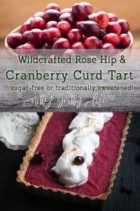 wildcrafted rose hip & cranberry curd tart pin