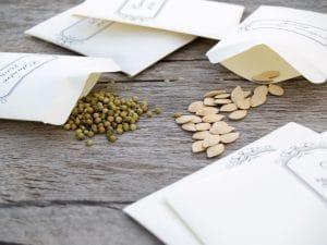 understanding seed packets